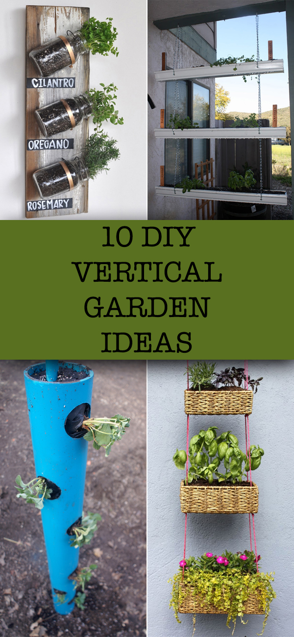 10 Creative DIY Vertical Garden Ideas