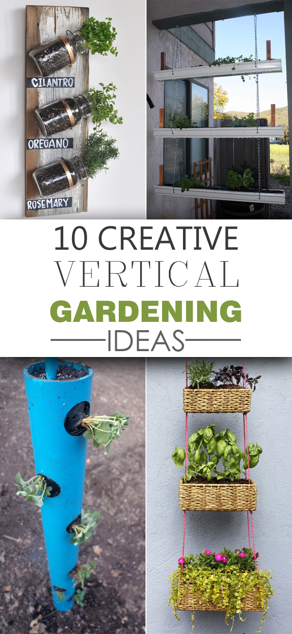 10 Creative Vertical Gardening Ideas