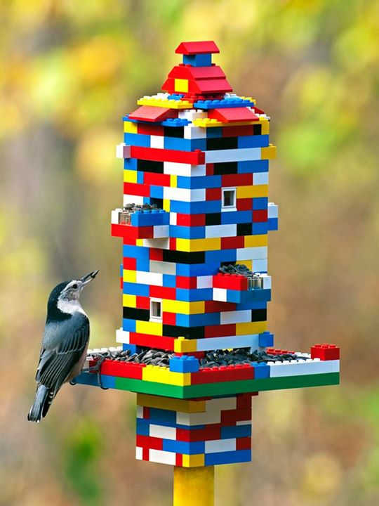 Create this colorful and functional LEGO bird feeder to attract more birds to your garden