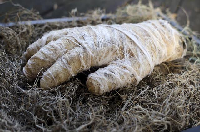 Dollar Store Mummy Hand