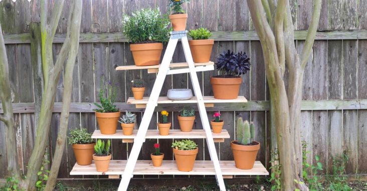 Ladder Vertical Garden