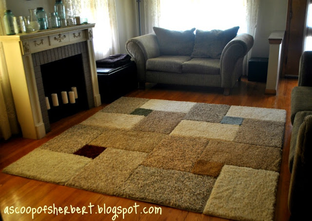 Large Area Rug For Under $30