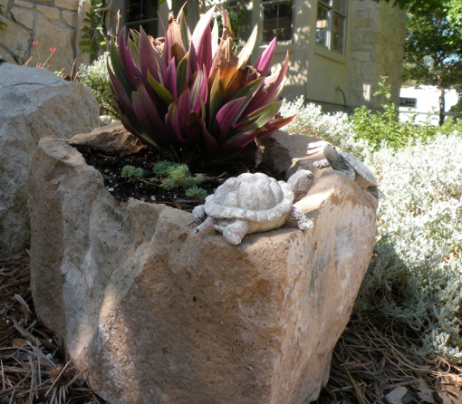 Natural Rock Planter