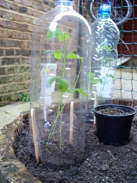 Plastic Bottle Crafts Recycled Garden