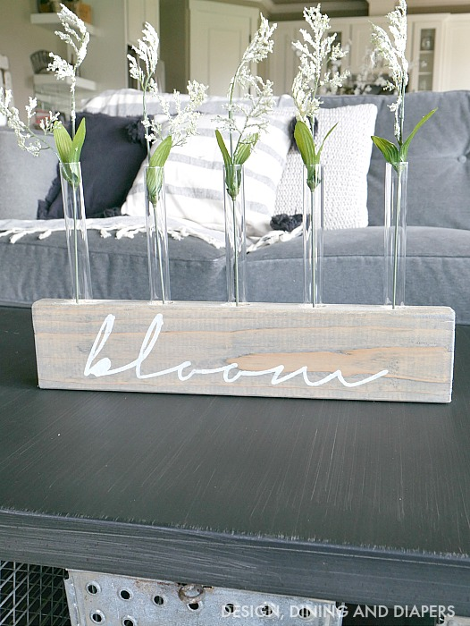 Test Tube Vase Display