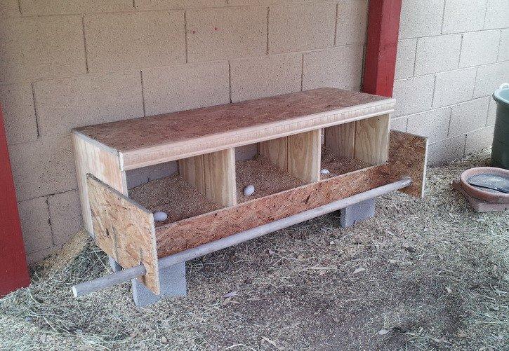 Triplex Chicken Nesting Box