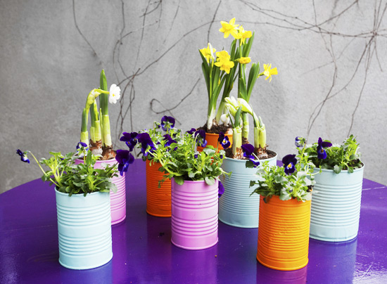 Upcycle tin cans into planters