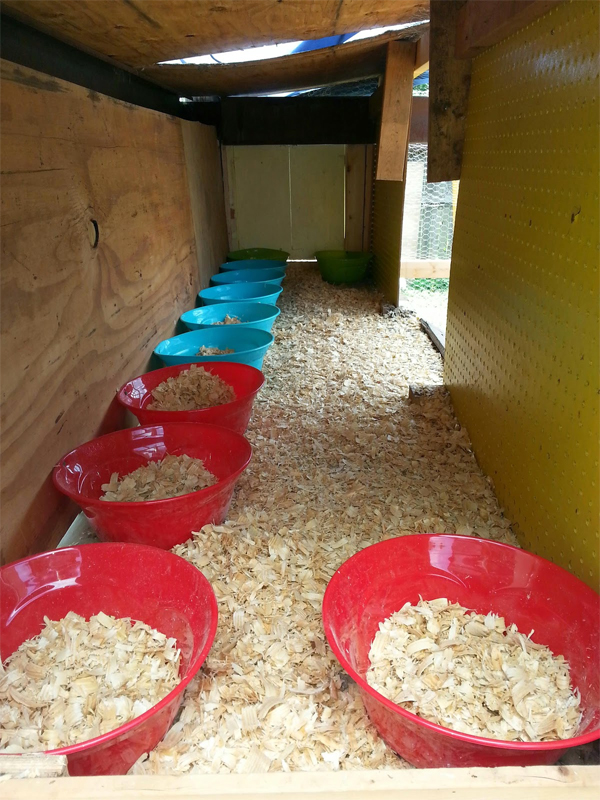 Use Large Plastic Bowls as Nesting Boxes