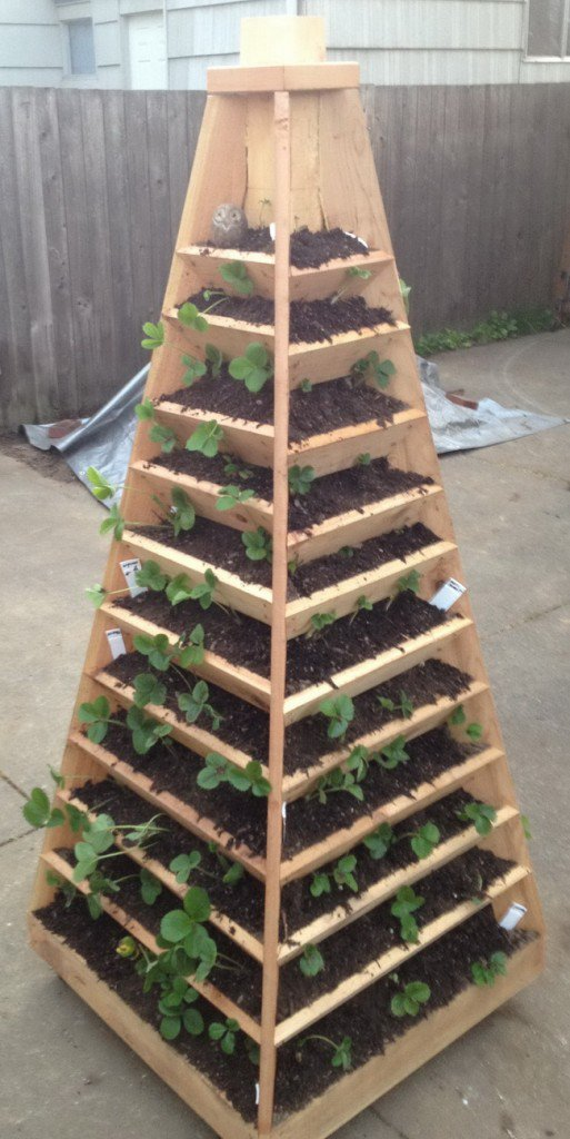 Vertical Garden Pyramid Tower