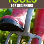10 Essential Gardening Tools For Beginners