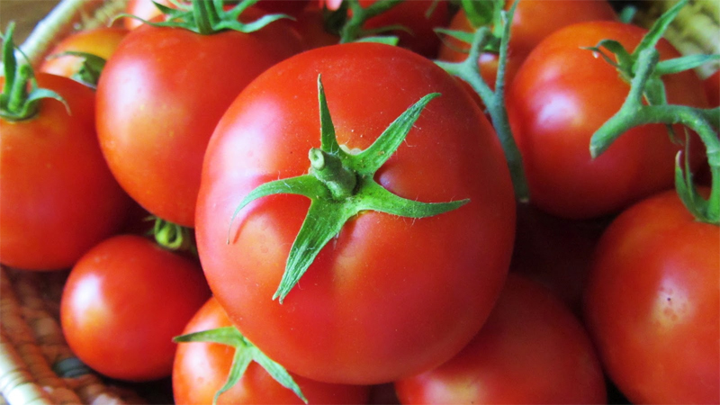 Don't store tomatoes in plastic bags