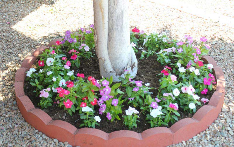 12 amazing ideas for flower beds around trees for Planting flower beds in front of house