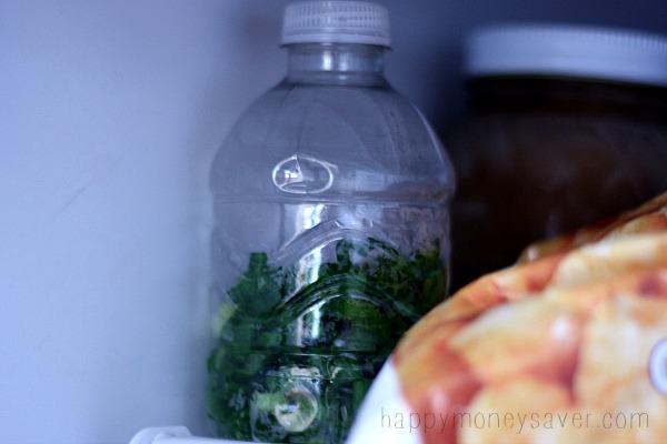 Freeze green onions in a plastic bottle