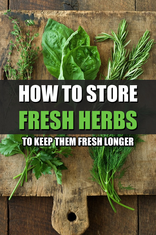 How to Store Fresh Herbs to Keep Them Fresh Longer