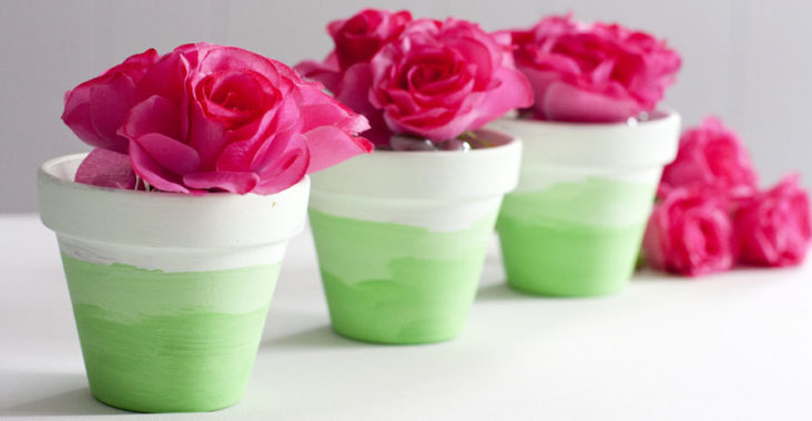 Mini Ombre Painted Flower Pots