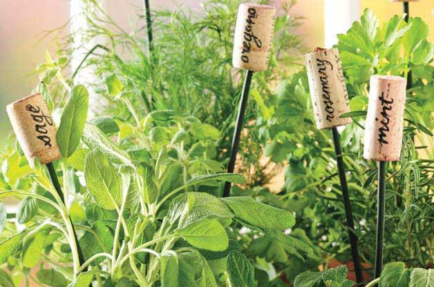 Wine Cork herb Garden Markers