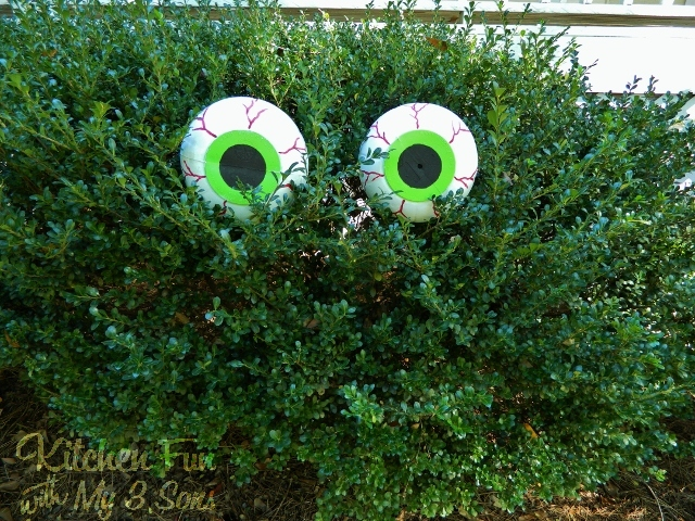 Spooky Bush Eyes