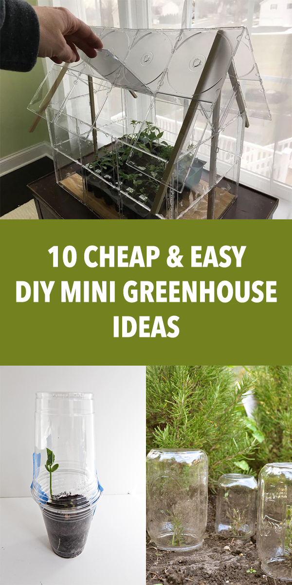 10 Cheap and Easy DIY Mini Greenhouse Ideas