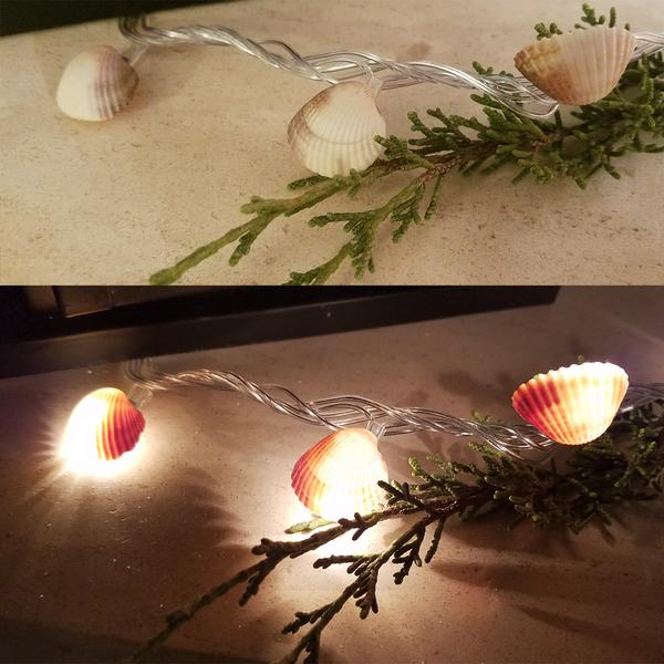 Seashell Fairy Lights